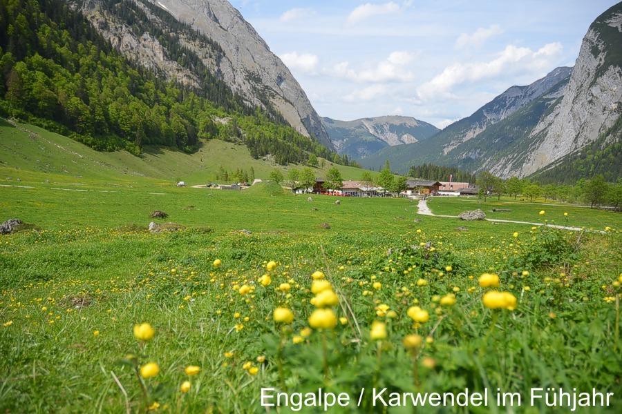"""Karwendel """"Sommer in der Eng"""""""